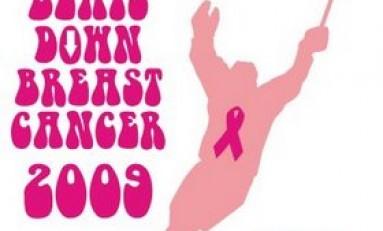 Hockey Beats Down Breast Cancer