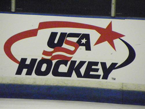 USA Hockey Logo 8-19