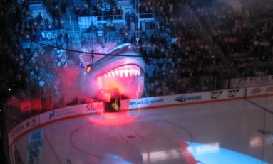 Sharks' Homestand Vital To Playoff Hopes