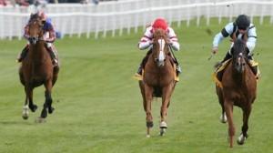 Horse Racing - 3 Horse Race