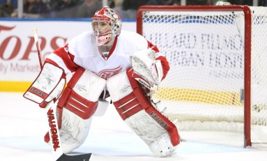 Red Wings In Phoenix With Goalie Debate In Hand