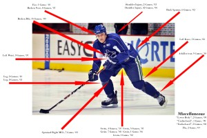 Sami Salo Injury Digest (via NucksMisconduct.com)