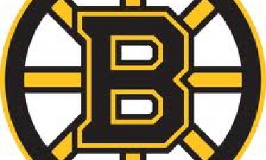 Boston Bruins: On The Warpath