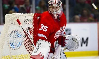 4 Reasons for the Detroit Red Wings' Thriving Season