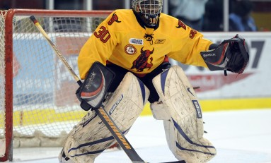 Boston Bruins Prospects - Fall 2012 Rankings: The Top Five