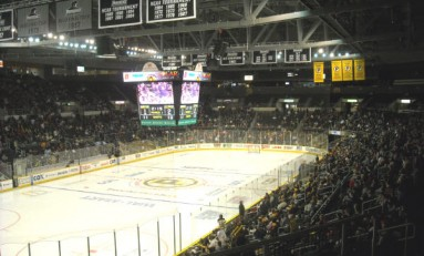 Where Should Boston Bruins Fans Turn Their Attention During NHL Lockout?