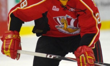 QMJHL Round-up: 4 Teams Distancing Themselves From The Pack