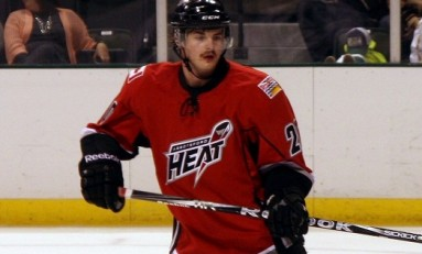 2013-14 Abbotsford Heat Season Preview