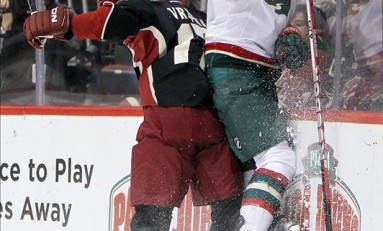 Minnesota Wild: 2012-13 Regular Season Review