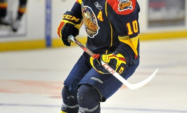 Stephen Harper - The Next Ones: NHL 2013 Draft Prospect Profile