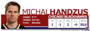 THWProfile - Sharks Michal Handzus