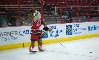 It's Time to Roast the Carolina Hurricanes Mascot