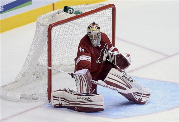 Mike Smith (Jennifer Stewart-USA TODAY Sports)