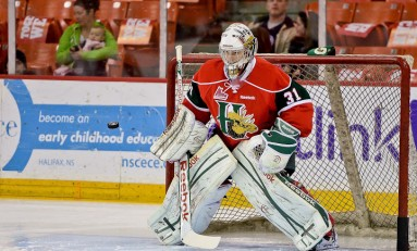 Zach Fucale - The Next Ones: 2013 NHL Draft Prospect Profile