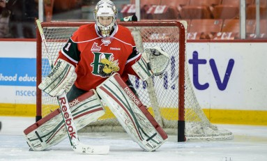 2013 NHL Draft Spotlight: The Masked Men
