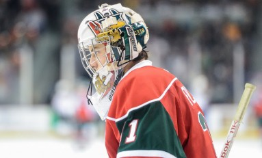 Zachary Fucale: Goalie of the Future or Trade Bait?