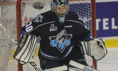 Philippe Desrosiers - The Next Ones: 2013 NHL Draft Prospect Profile