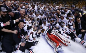 The Chicago Blackhawks captured their second Stanley Cup in four years. (Greg M. Cooper-USA TODAY Sports)