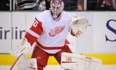Help Wanted! Red Wings Looking For A Backup Goaltender