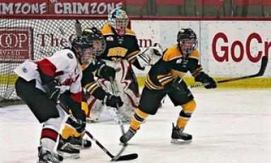 2013 CWHL Draft: NCAA Player Rankings