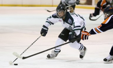 NCAA Women's Hockey: 2013-2014 CHA Preview