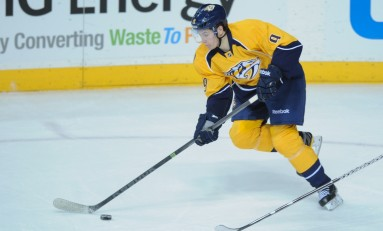 Nashville Predators Top Five Prospects: Pre 2014 Draft