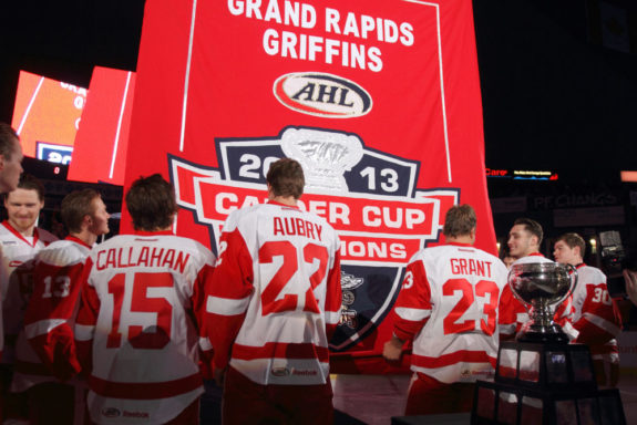 The Grand Rapids Griffins raise their 2012-13 championship banner in front of a sold out Van Andel Arena on October 18, 2013