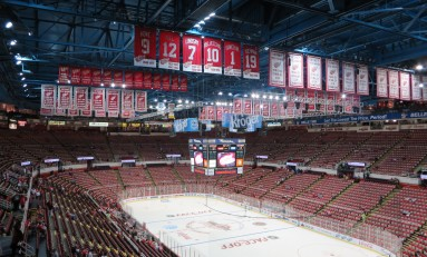 6 New Year's Resolutions for Detroit Red Wings Fans