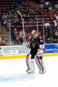 Binghamton Senators goaltender Andrew Hammond. (Annie Erling Gofus/The Hockey Writers)