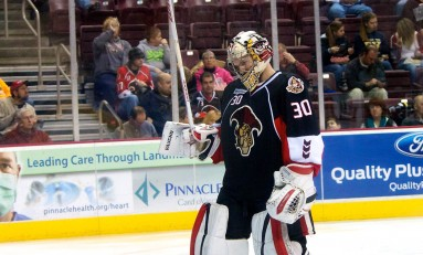 2014 Rookie Tournament Recap: Senators Report Card