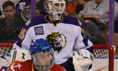 Profiling the LA Kings' Goalies and Goalie Prospects