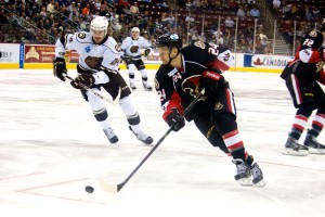 Hershey Bears John Mitchell and Binghamton Senators Stephane Da Costa. (Annie Erling Gofus/The Hockey Writers)