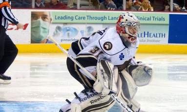 Hershey Bears Home Streak Snapped
