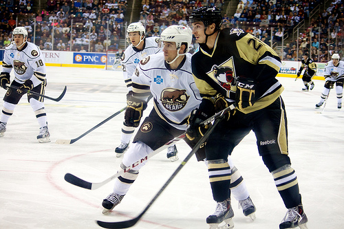 The Hershey Bears host the Wilkes-Barre/Scranton Penguins in a November game in 2013 (Annie Erling Gofus/The Hockey Writers)