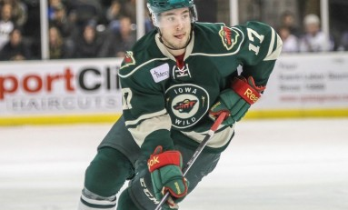 Minnesota Wild Re-Sign Brett Bulmer