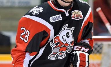 Aaron Haydon – The Next Ones: NHL 2014 Draft Prospect Profile