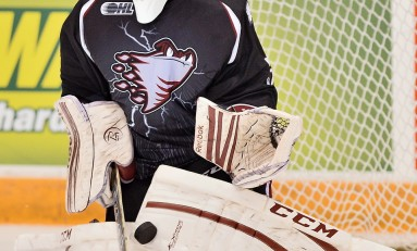2014 NHL Draft: Draft-Eligible Darkhorse Goalies (North America)