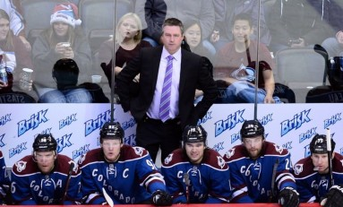 The 2013-2014 Colorado Avalanche: How They Were Built
