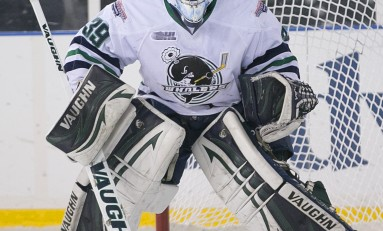 Alex Nedeljkovic - The Next Ones: 2014 NHL Draft Prospect Profile