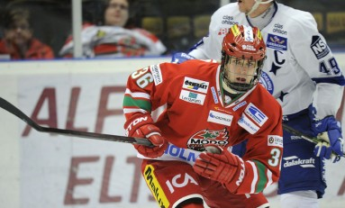 THW's List Of Prospects Playing In The SHL (14-15 Edition)