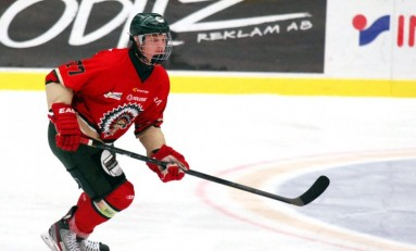 Anton Karlsson – The Next Ones: NHL 2014 Draft Prospect Profile