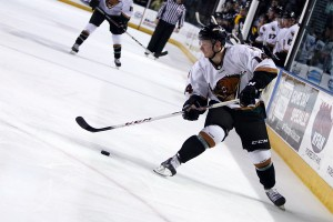 Could the ECHL Utah Grizzlies make the jump to the AHL in 2015-16?