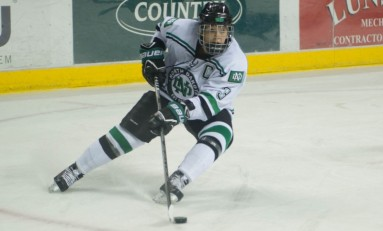 NCAA Women's Hockey: Farewell to the Class of 2014