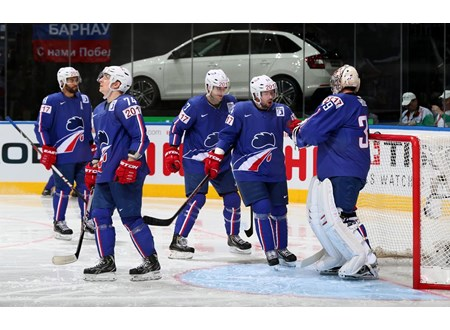 Les Bleus have enjoyed one of the best tournaments in 2014 IIHF World Championships