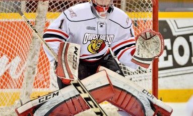 2014 NHL Draft: Late Blooming Goalies