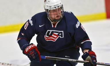 Joe Wegwerth – The Next Ones: NHL 2014 Draft Prospect Profile