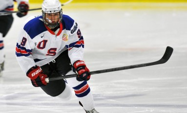 Shane Gersich – The Next Ones: NHL 2014 Draft Prospect Profile