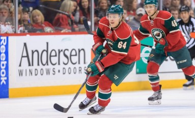 Minnesota Wild's Best Young Forward