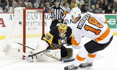 Who Will Back up Marc-Andre Fleury?