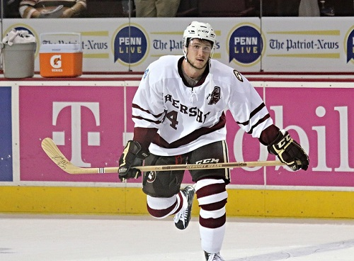 Hershey Bears defenseman Tomas Kundratek (flickr/stat19)